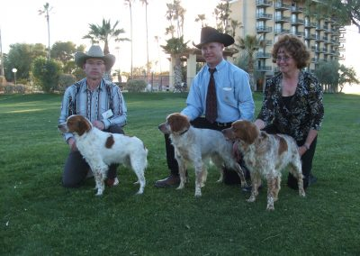CEB-US Nat'ls 2007 CH TopperLyn Gallant Bodacious, CH TopperLyn D'Artagnan, CH TopperLyn Draco Malfoy 3 full brothers UKC Top Ten