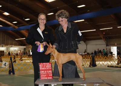 Colisto's Viola Best Of Breed Lewis-Clark KC Lewiston, ID